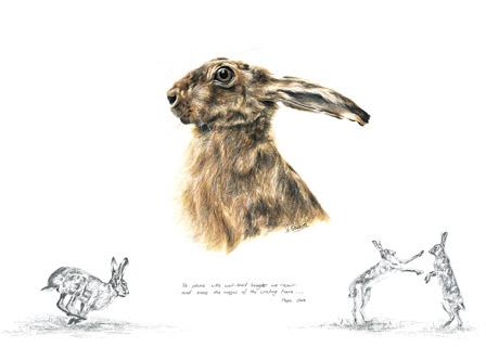 Hare Greeting Card 1