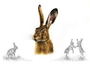 Hare Greeting Card 2