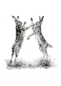 Hares Boxing notelet