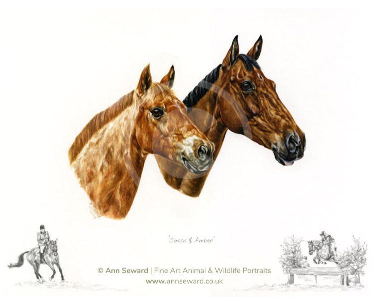 Horse Portrait - Childhood Ponies