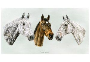 Three Hunter Geldings