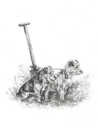 Terriers with Spade notelets